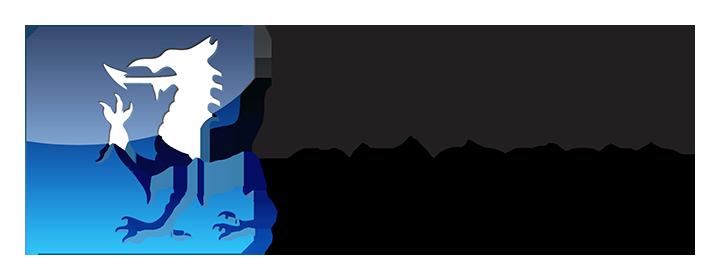 Formatt-Hitech